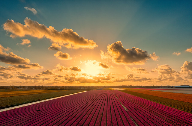 Holland, the Sunset Country of the World.
