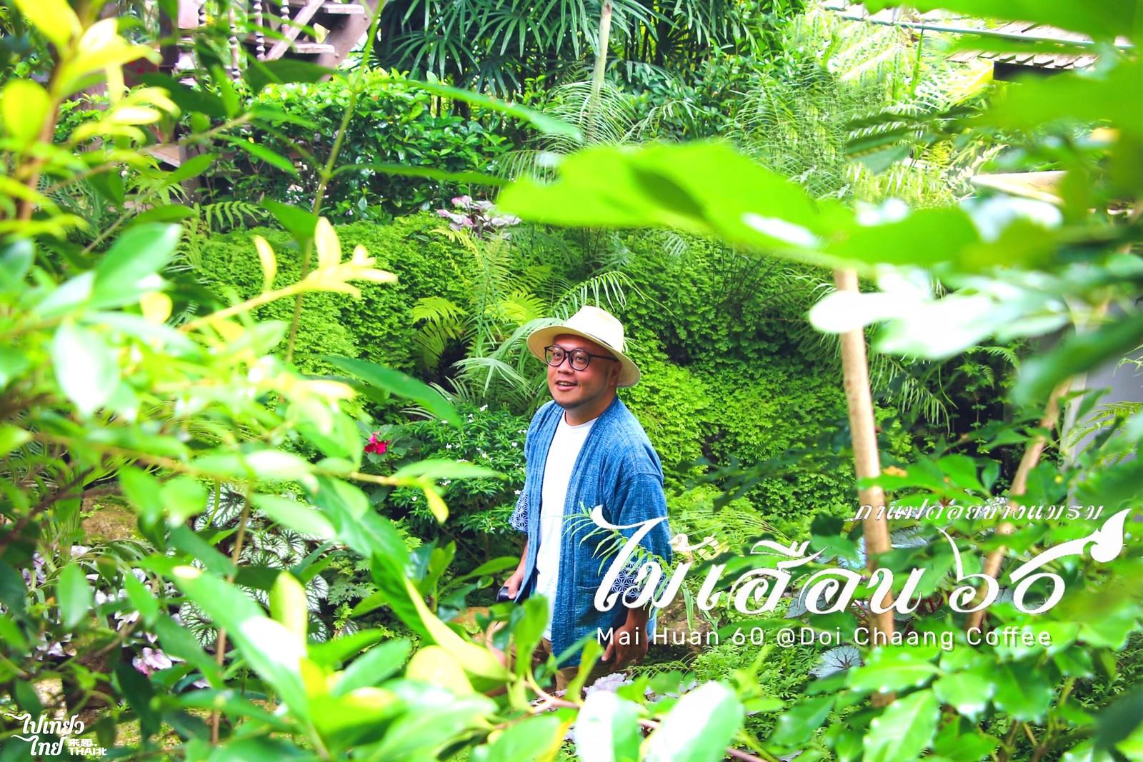 清邁湄林。綠野仙蹤咖啡【Mai Huan 60 Doi Chaang Coffee】