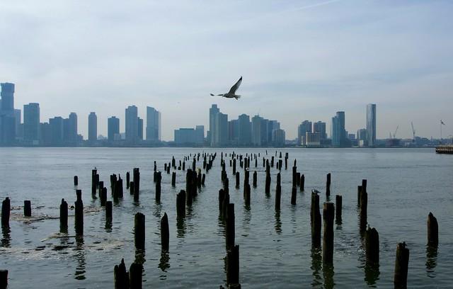 Solo flight (blue skyline) - SoHo, New York City