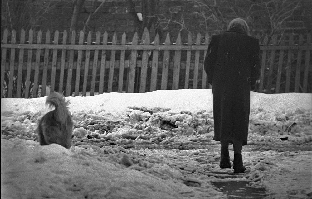 1974. «Несмотря на погоду»