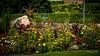 Le magnifique travail des jardiniers de la ville