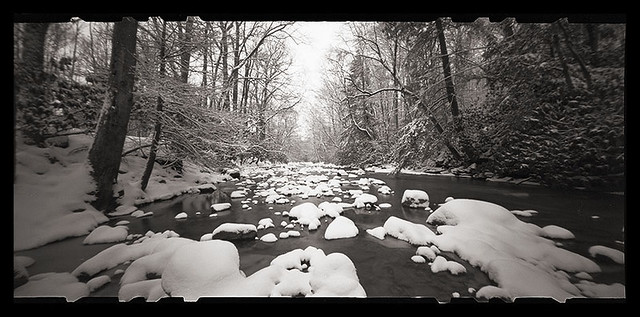 Muddy Creek in Winter