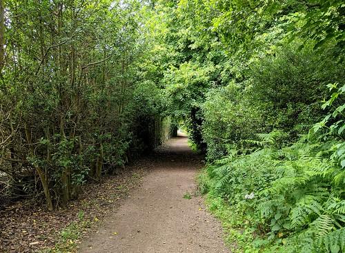 Balbirnie Path, Fife, Scotland
