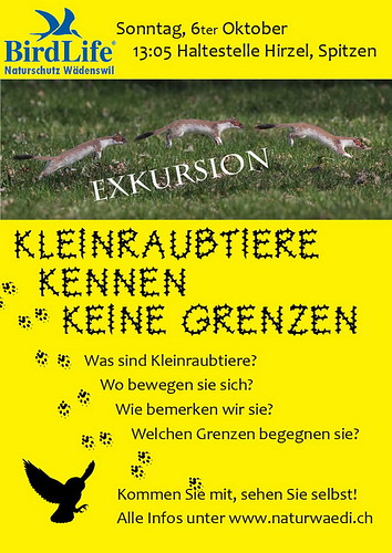 2013_10_11_Exkursion