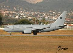 230721 - Argentine AF B737 - T-99 - lemg (121)