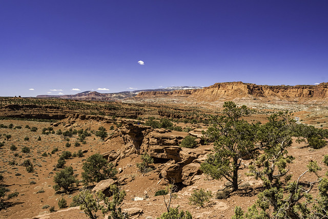 looking west from Panorama Point  in Capitol Reef NP