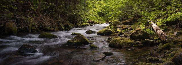 Cold Spring Creek Pano