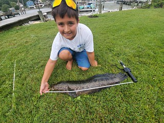 Photo of young angler measuring a snakehead on the ground