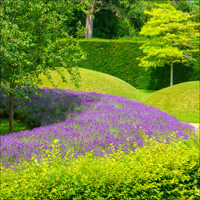 Lynn Garden