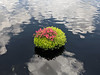 Theme Park at Home: Floating Planters