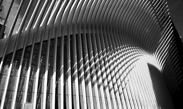 Spine (B&W) - Oculus, New York City
