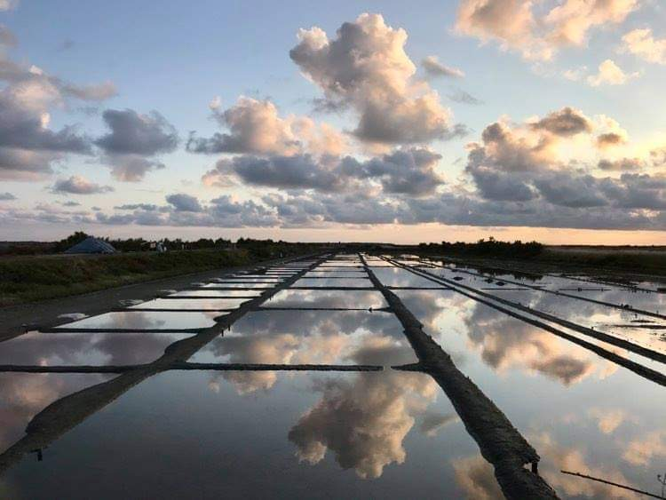 Sun rising over the salt marshes !👌😉