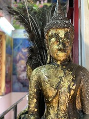 :yellow_heart: Gold leaf & peacock feathers #bangkok