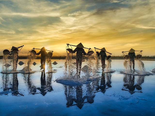 Salt Harvesting in Vietnam