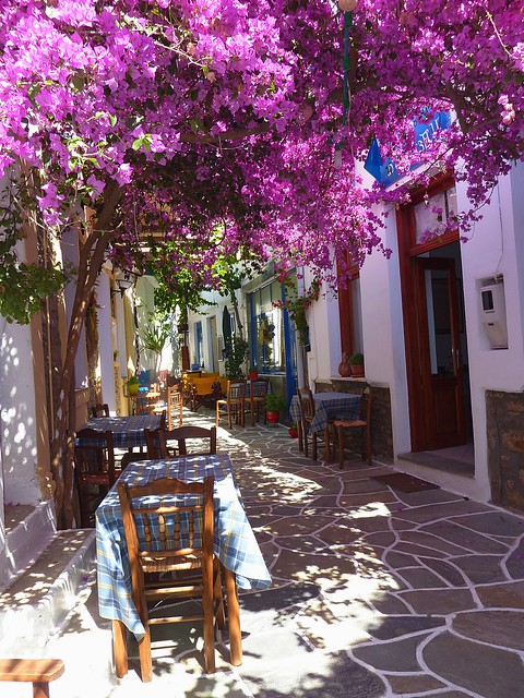 Alley, tavernas and blossoms