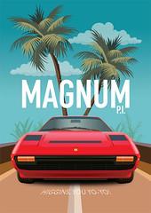 Magnum PI TV Series