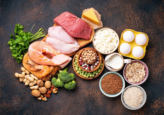 Protein intake and our circadian clock - Waseda University Study