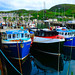 Scotland North West Highlands Mallaig a busy fishing port 19 June 2021 by Anne MacKay