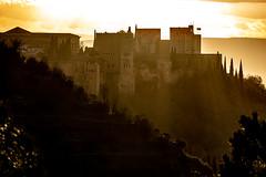 Alhambra 31-01-2021