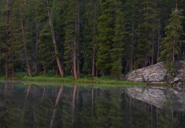 _DSC7493-Woods Lake shore 1jpg