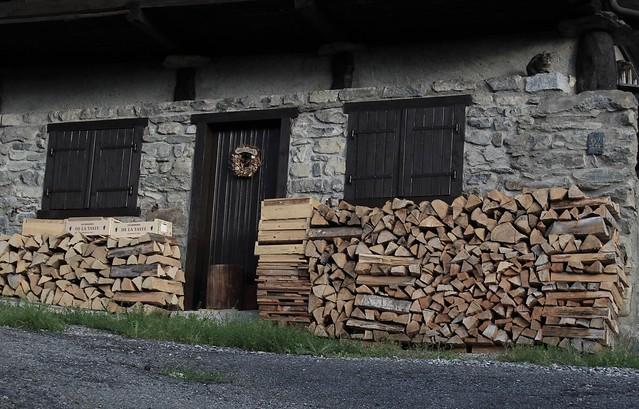 le chat et le tas de bois