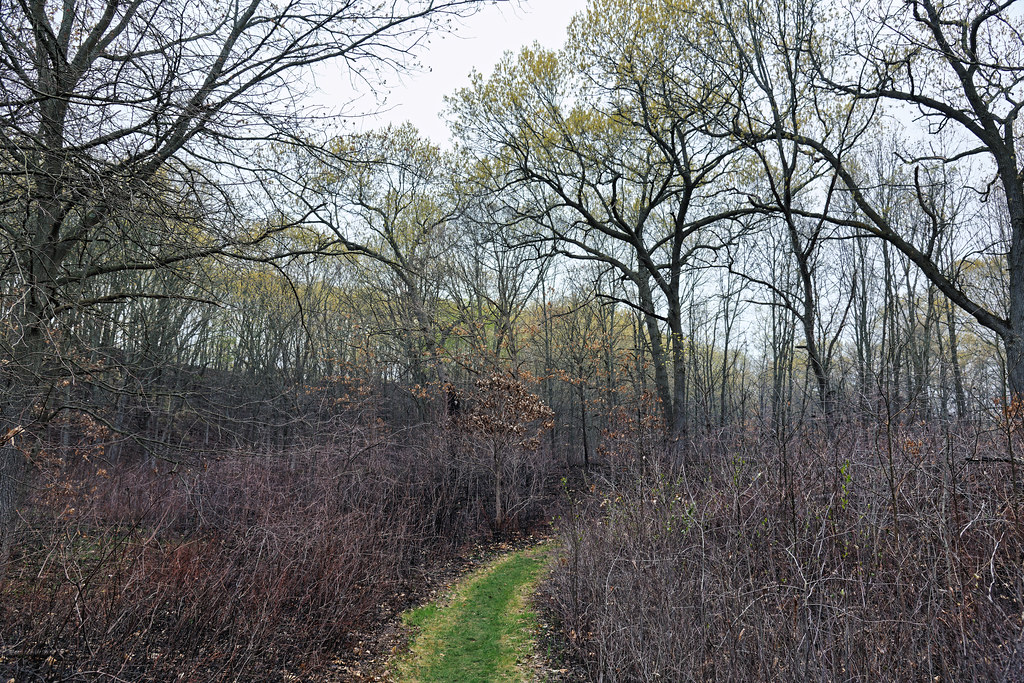 Taking One Day at a Time in Indiana Dunes National Park