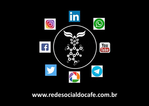 WhatsApp Image 2021-07-28 at 11.33.34