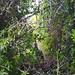 se7en-04-Jul-21-Whitagram-Image 4