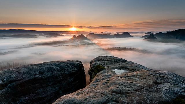 Goldener Nebelmorgen...