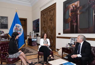 2021 JUL 28 Secretary General Meets with IACHR President and Vice-Presidents