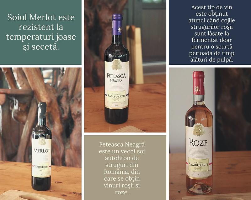 domeniile samburesti vinuri