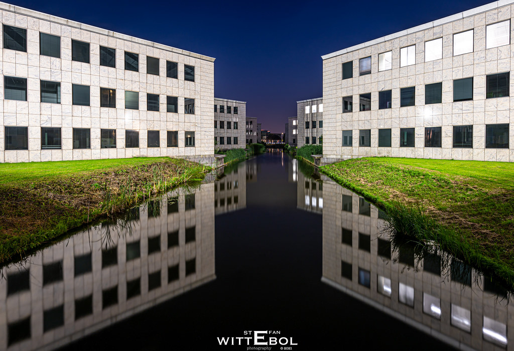 South Holland - White reflections