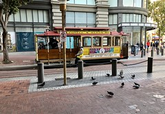 The cable cars prepare to return to service