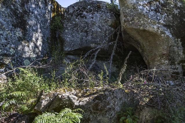LaRevenga-LaCerca-CuevaAndres-Cuyacabras-LaRevenga_1273