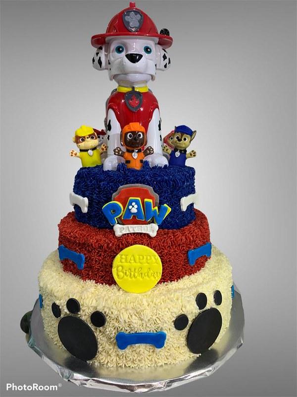 Paw Patrol Cake by Cake That