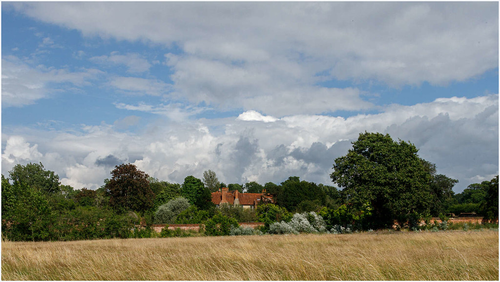 West Horsley Nature walk-9