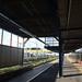 Keikyu 1000 Series Train Arriving at Namamugi Station 5