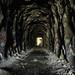 Donner Pass Summit Tunnels, Truckee, California