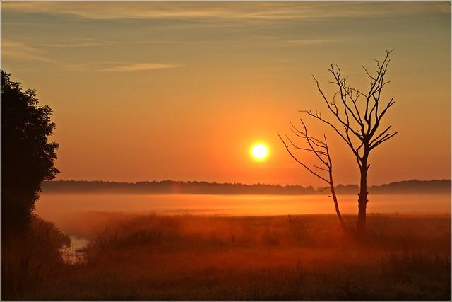 Sonnenaufgang in der Lausitz