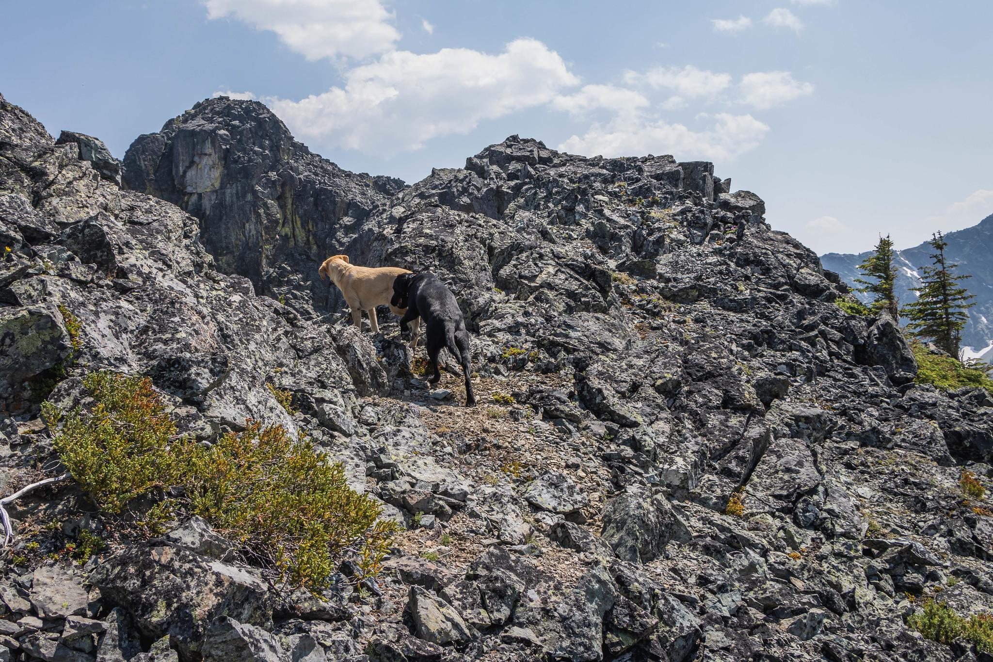 This way to Eightmile Peak