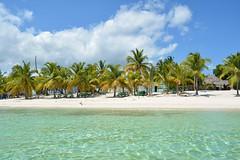 Escenas del Caribe 169