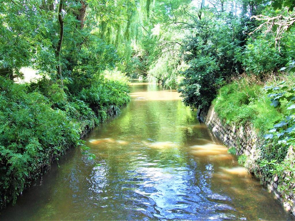 The Beverley Brook In Barnes - London (Looking Upstream).