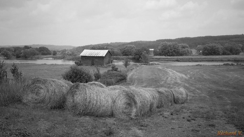 Le temps des foins, Hay time, Beauce, P.Q., Canada - 1753-8