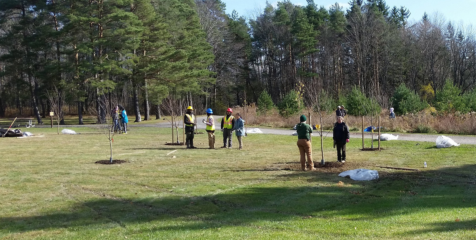 Community tree planting event Onondaga County Soil & Water Conservation District