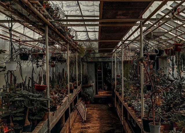 A gardener's workshop