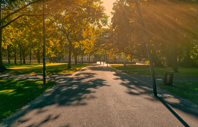 City park Valkenberg, Breda.