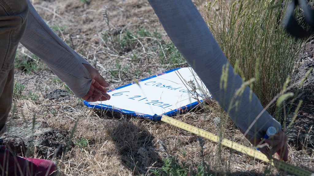 UAS Invasive Species Detection-Initial Point Field Site