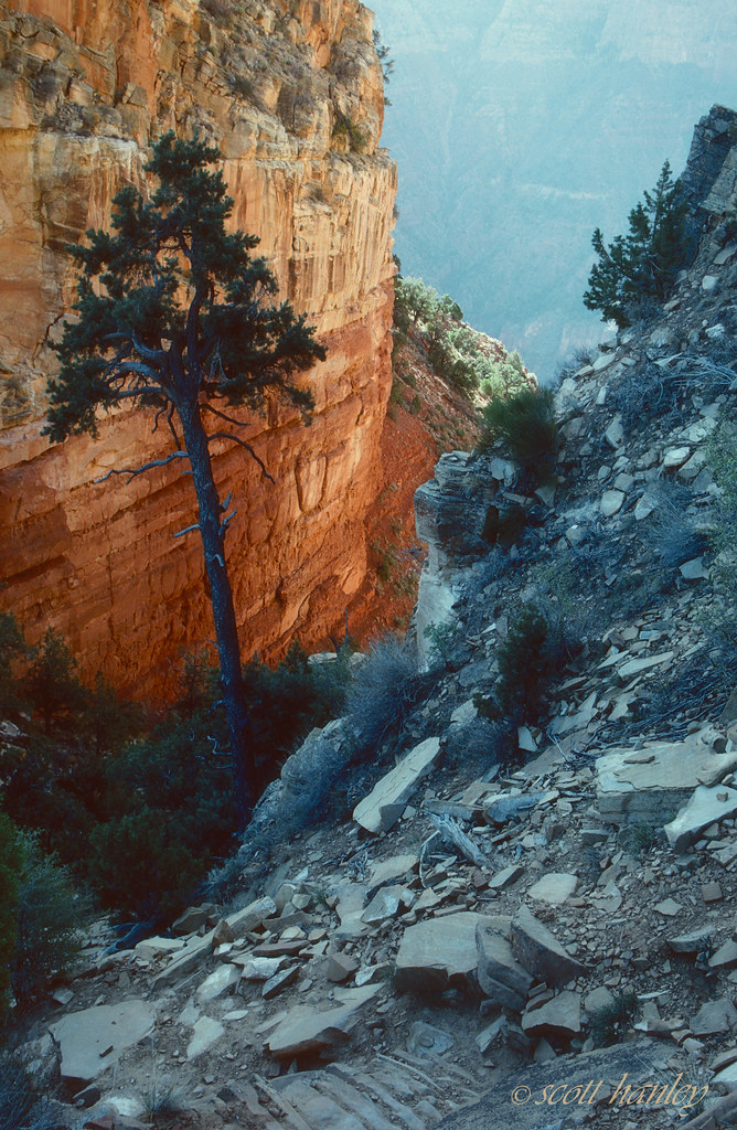 Morning light on cliff face