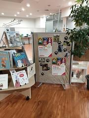 Dog registration display, Linwood Library