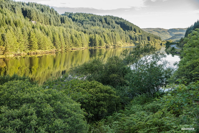 Lush green landscape of the River Oude at sunrise, Argyll, Scotland.